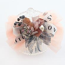 49782边夹顶夹, 蝴蝶结, 字母数字/符号, 植物, 平面/立体几何图形花 蝴蝶结 弹簧夹 网纱 字母LOVE