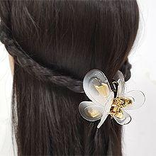 53599爪夹, 植物蝴蝶